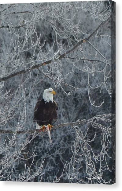Frosty Morning Eagle Canvas Print