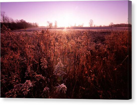 Canvas Print featuring the photograph Frosty Sunrise by Lars Lentz