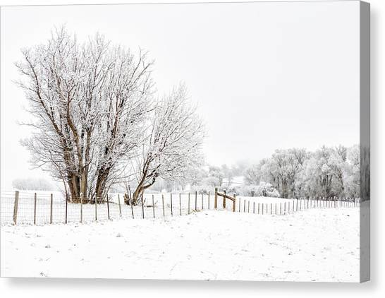 Canvas Print featuring the photograph Frosty Winter Scene by Denise Bush