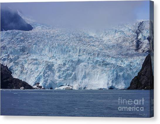 Frozen Beauty Canvas Print