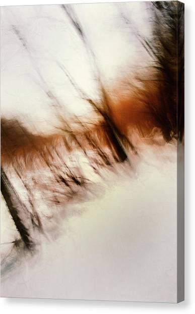 Art Movements Canvas Print - Frozen Dreams by Scott Norris