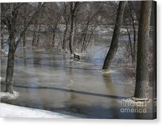 Frozen Floodwaters Canvas Print