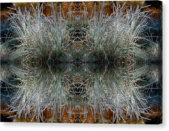 Frozen Grass Abstract Canvas Print by Gary Cloud
