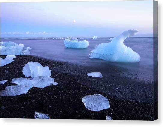 Glacier Bay Canvas Print - Frozen In Time by Brad Scott