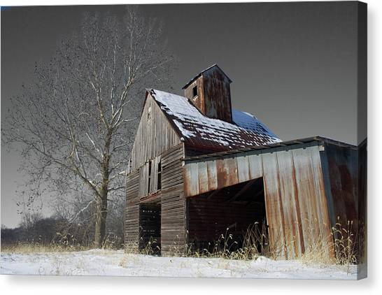 Canvas Print featuring the photograph Frozen Letcher by Dylan Punke