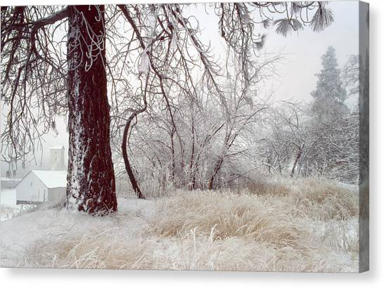 Frozen Morning In Palouse Canvas Print by Jerry McCollum