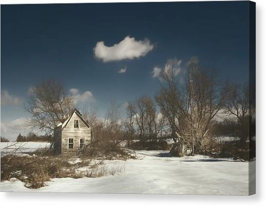 Trees In Snow Canvas Print - Frozen Stillness by Scott Norris