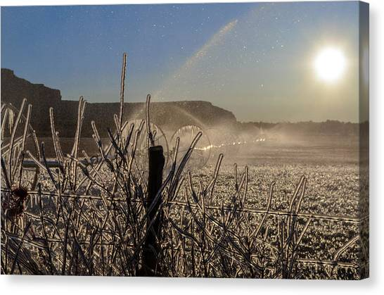 Frozen Sunrise Canvas Print