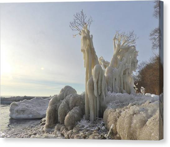 Canvas Print - Frozen Tree by Red Cross
