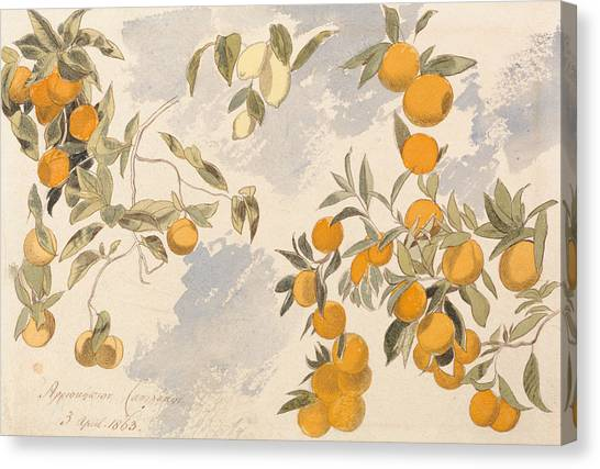 Fruit Trees Canvas Print - Fruit Trees, 3 April 1863 by Edward Lear