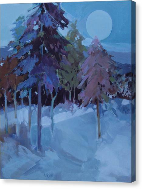 Full Moon And Pines Canvas Print