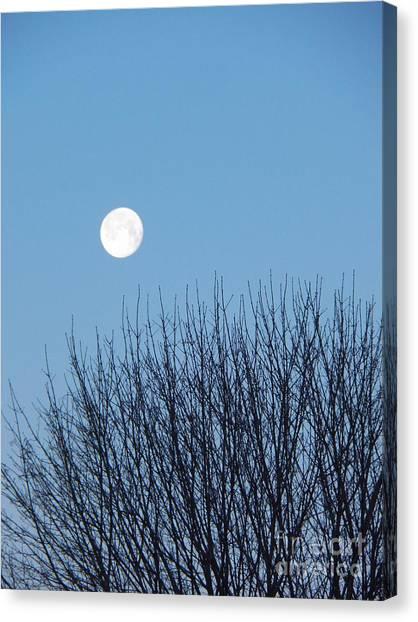 Full Moon At Dawn Canvas Print
