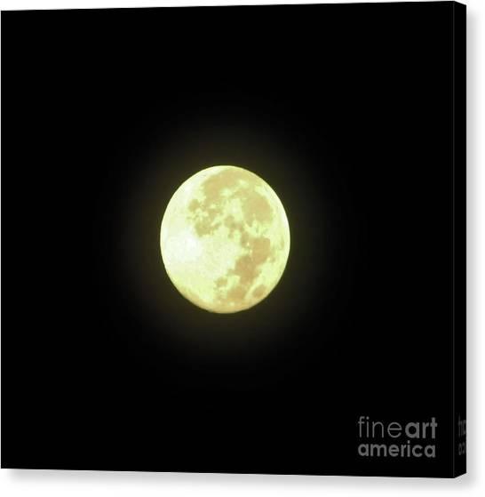 Full Moon August 2014 Canvas Print