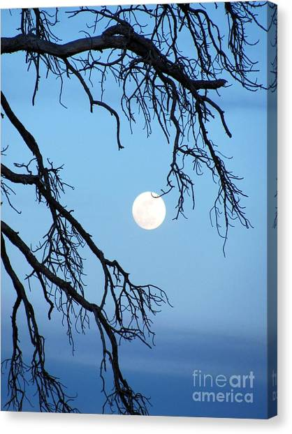 Full Moon Blue Sky Canvas Print