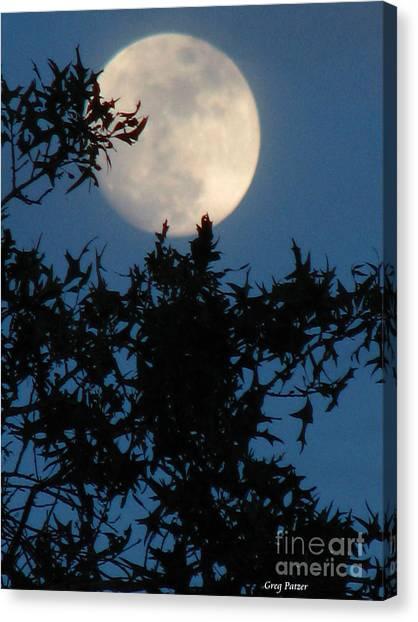 Full Moon Canvas Print by Greg Patzer