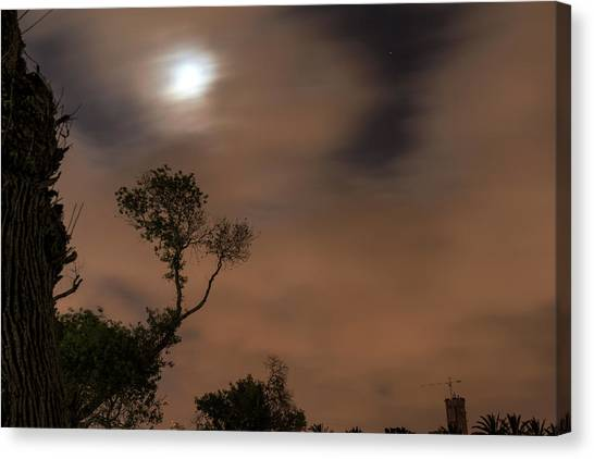 Canvas Print featuring the photograph Full Moon In The Park by Dubi Roman