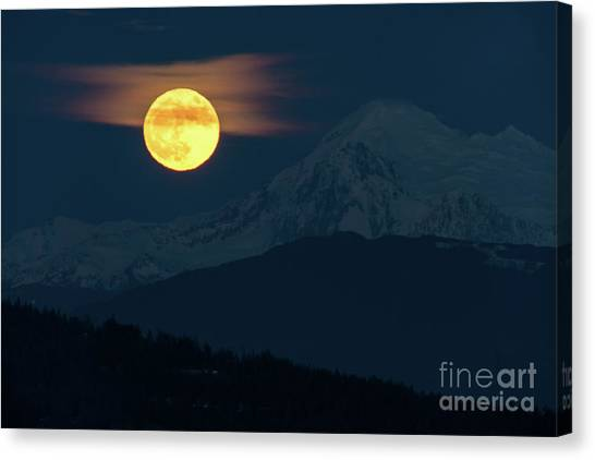 Wolf Moon Canvas Print - Full Moon Over Mount Baker by Mike Reid