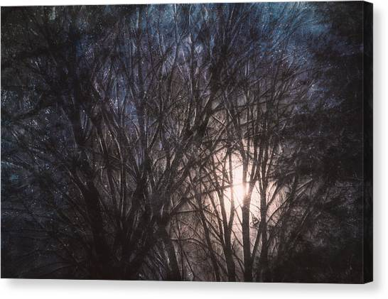 December Canvas Print - Full Moon Rising by Scott Norris