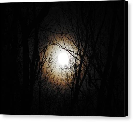 Full Pink Moon Rising Canvas Print by Traci York