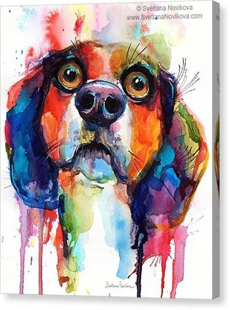Watercolor Canvas Print - Funny Beagle Watercolor Portrait By by Svetlana Novikova
