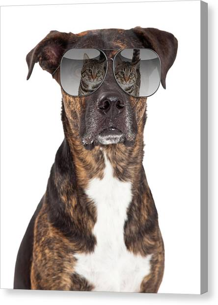 Funny Dog With Cat Reflection In Sunglasses Canvas Print