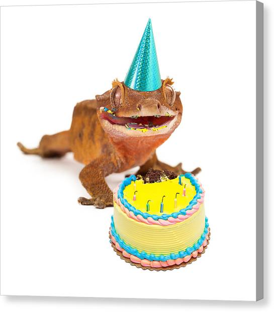 Funny Gecko Lizard Eating Birthday Cake Canvas Print