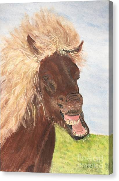 Funny Iceland Horse Canvas Print
