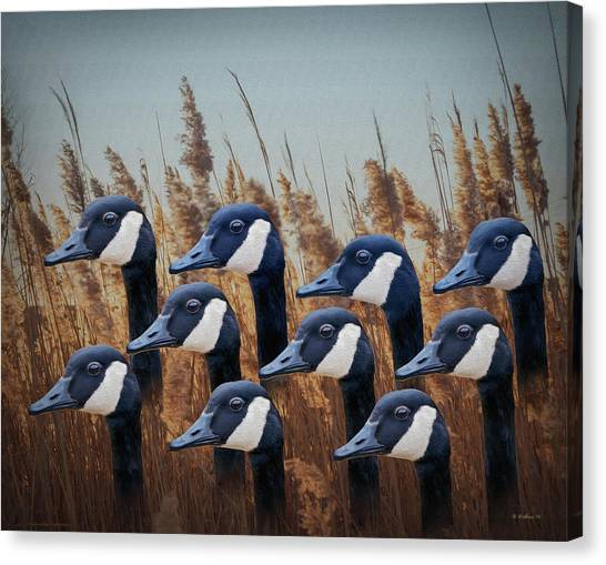 One Direction Canvas Print - Gaggle Order by Brian Wallace