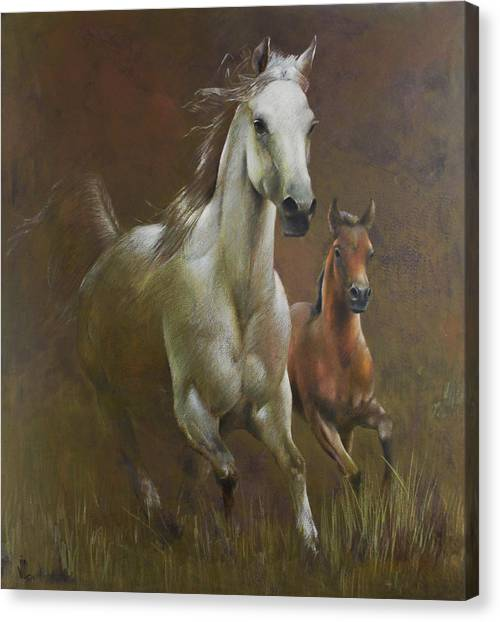 Gallop In The Eyelash Of The Morning Canvas Print