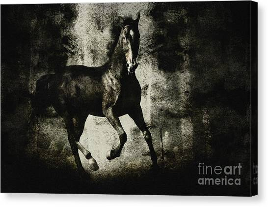 Galloping Horse Artwork Canvas Print