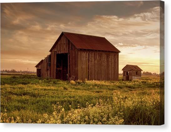 Galt Barn At Sunset Canvas Print
