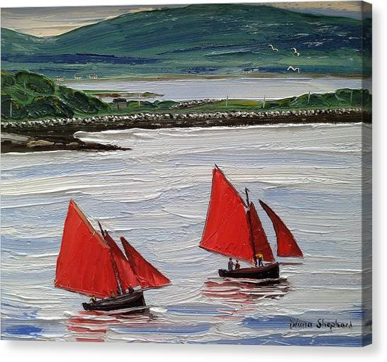 Galway Hookers Sailing By Roundstone Harbour Connemara Ireland Canvas Print
