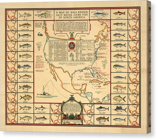Angling Canvas Print - Game Fishing Chart Of North America - Game Fish Varieties - Illustrated Map For Anglers by Studio Grafiikka