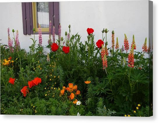 Garden Beauty Canvas Print