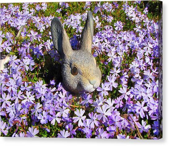 Garden Bunny Canvas Print