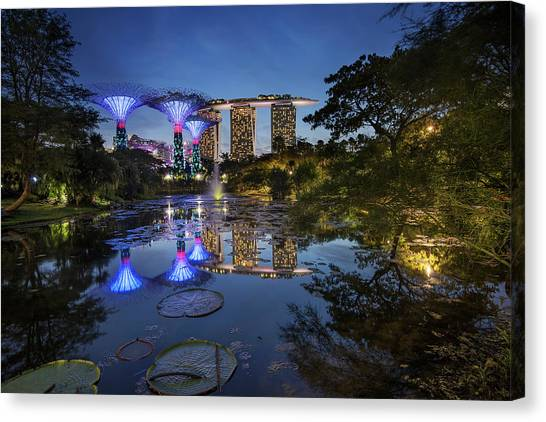 Canvas Print featuring the photograph Garden By The Bay, Singapore by Pradeep Raja Prints