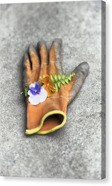 Garden Glove And Pansy Blossoms1 Canvas Print