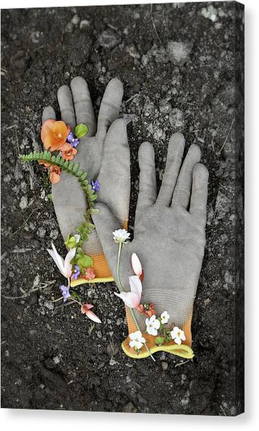 Garden Gloves And Flower Blossoms Canvas Print