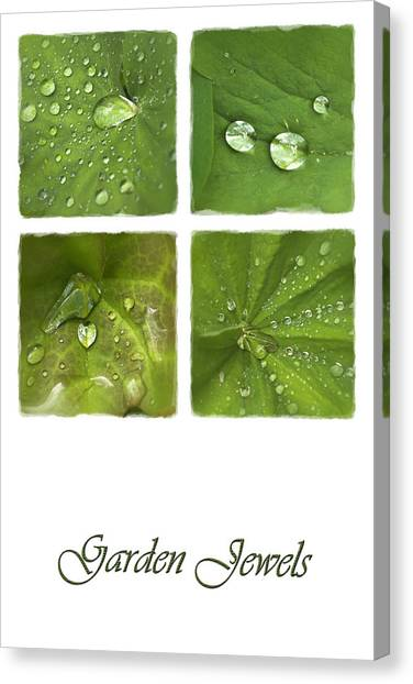Garden Jewels Canvas Print