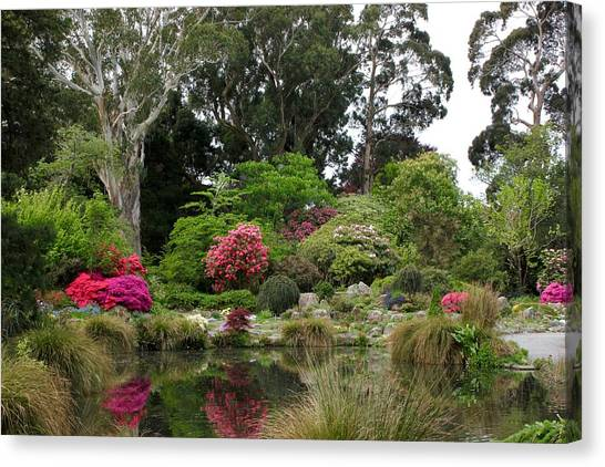 Garden Reflection Canvas Print
