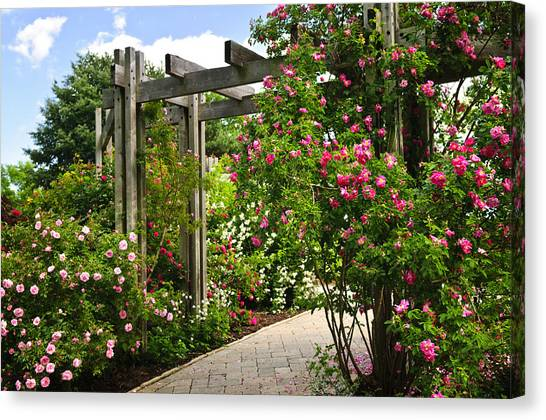 Arbor Canvas Print - Garden With Roses by Elena Elisseeva