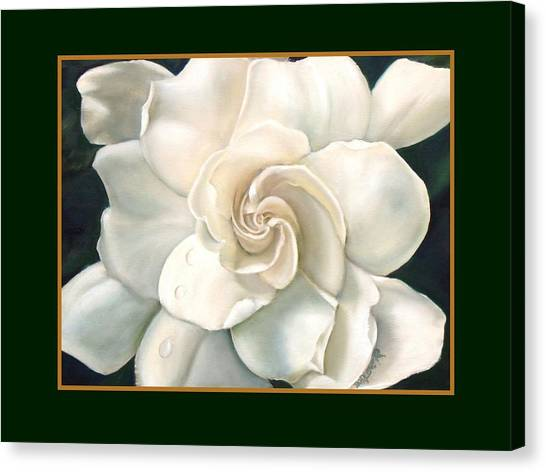 Gardenia Canvas Print by Darlene Green