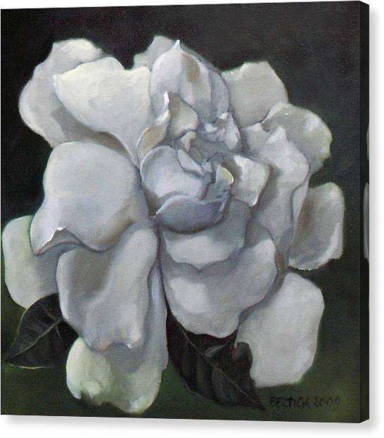 Gardenia Two Canvas Print by Bertica Garcia-Dubus