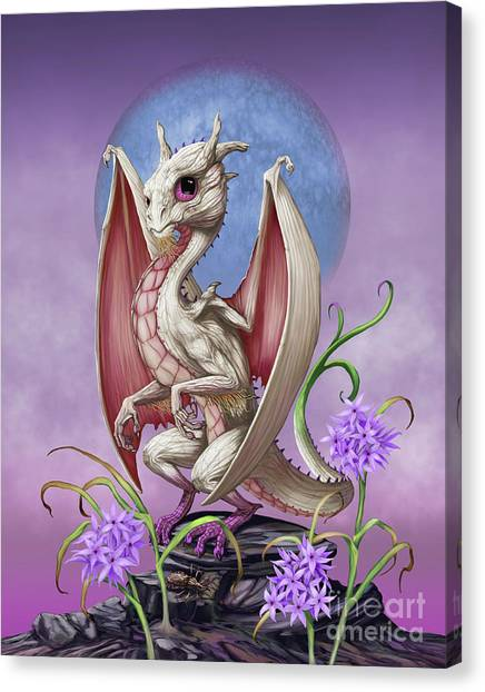 Garlic Dragon Canvas Print