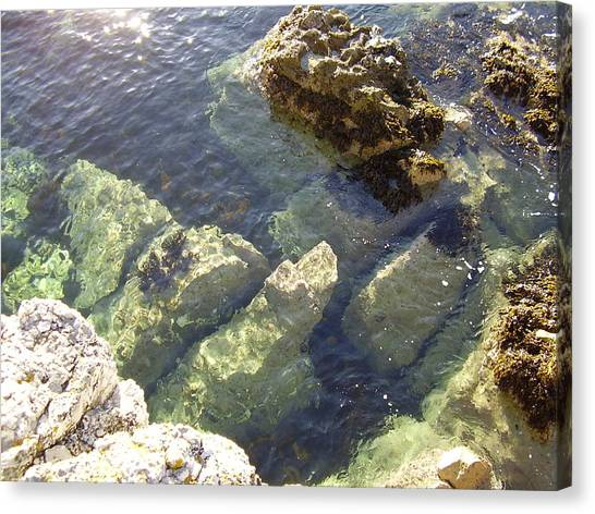Garron Point Rock Pool Canvas Print