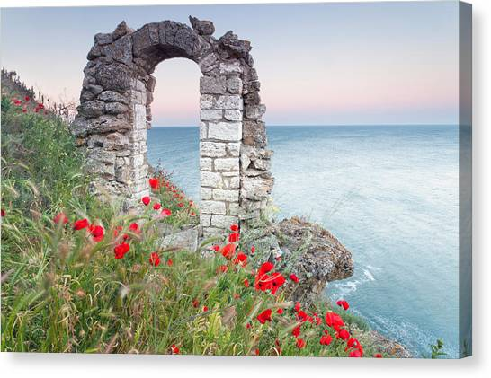 Gate In The Poppies Canvas Print