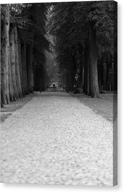 Gated Path Canvas Print by Edward Myers