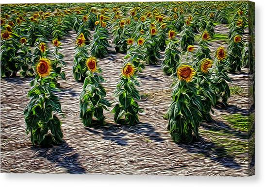 Gathering In Place Canvas Print