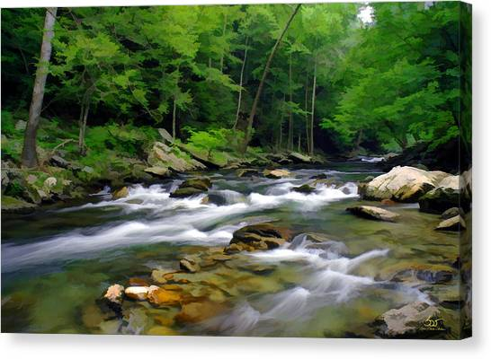 Gatlinburg Stream Canvas Print