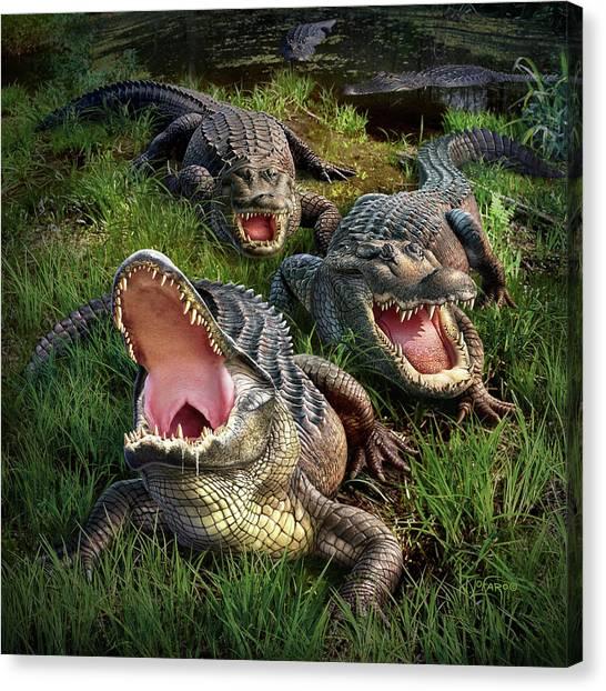 Swamps Canvas Print - Gator Aid by Jerry LoFaro